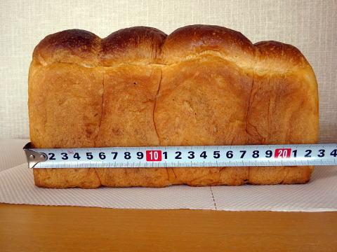 パンのトラの横の長さ
