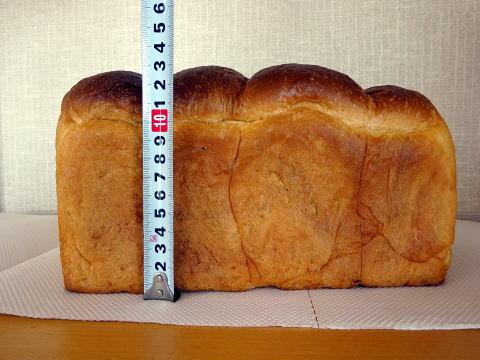パンのトラの縦の長さ