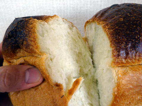 パンのトラを割ってみました
