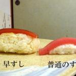 これが江戸時代のにぎり寿司!半田市で尾州早すしを食べてみた感想